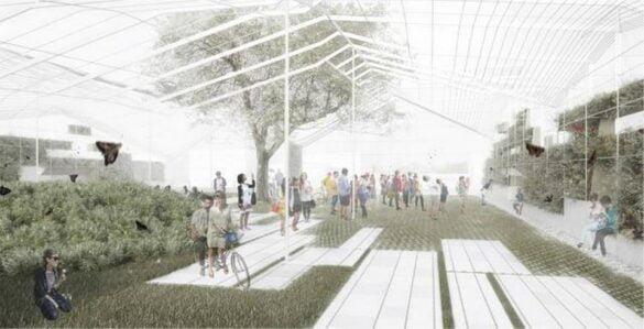 Resultados Concurso Arquitectura parque tipo Invernadero
