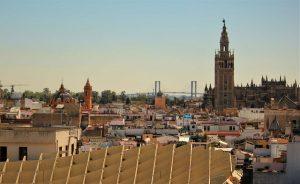 IMG_2495.jpg Concurso de Ideas de Arquitectura Sevilla: El Parque de la Musica